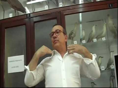 Caffè Scientifico sul Mazaro Dodicesimo incontro Dott Giuseppe Bianco