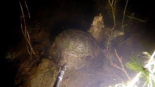 Подводная Охота. Что Обитает в Диких Озерах!