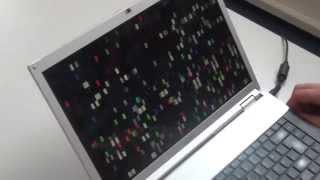 Fehlerbild: Defekter Grafikchip - Sony Vaio VGN-FZ21Z