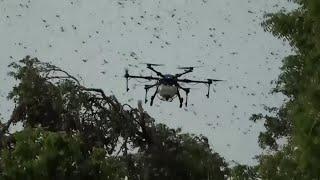 Drones vs. Locusts