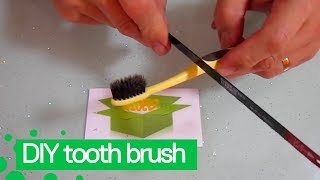Youtuber Shows How to Make DIY Electric Toothbrush