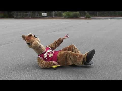 FFMS Staff Video-