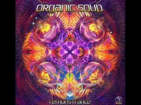 Organic Soup - Happy New Year 2014 SET (Psytrance-GOA-Fullon