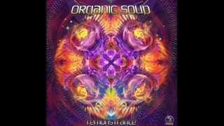 Organic Soup Happy New Year 2014 SET Psytrance GOA Fullon