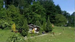How to buy raw milk fresh from the farm in Switzerland