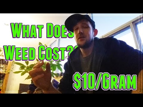 What Does Weed Cost??    $10 Per Gram