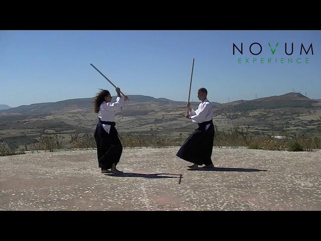 11 - Sanjuichi no Kumi Jo - Aikido Novum Experience - 合氣道 - 合氣杖 - 三十一の組み杖 - 31の組み杖
