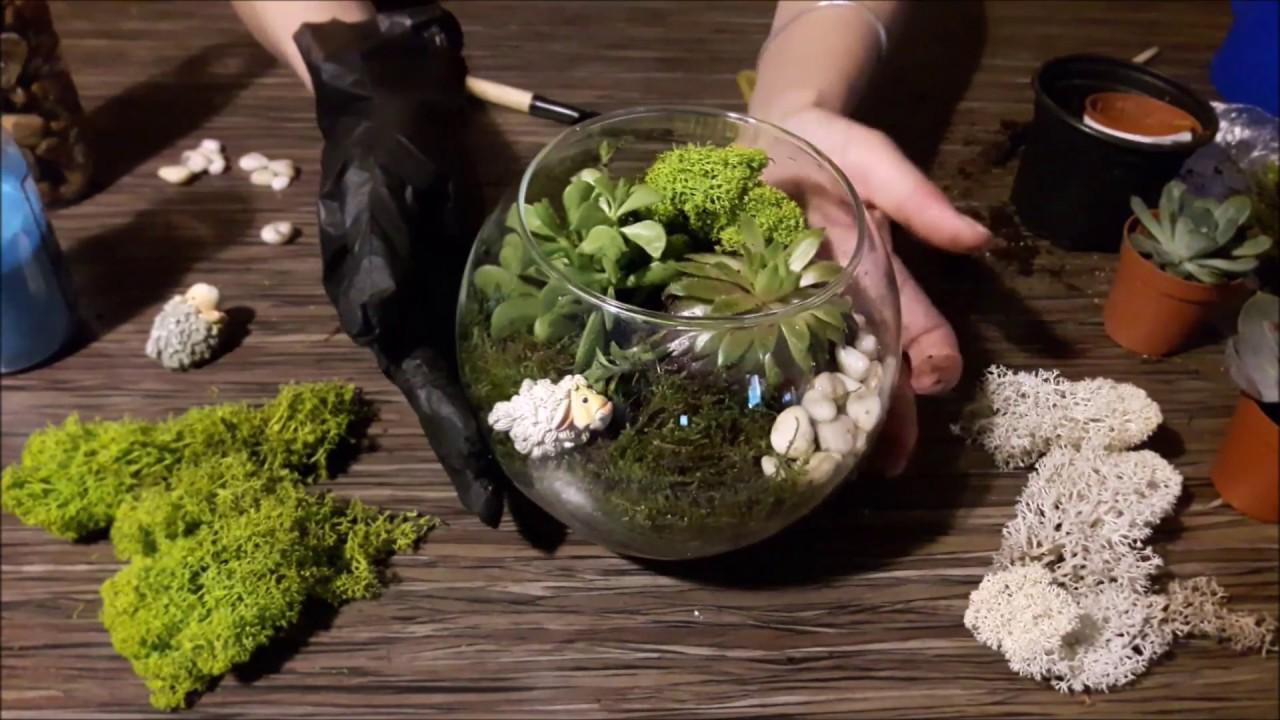 Флорариум для растений своими руками фото 95