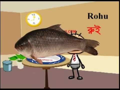 Fish name learning