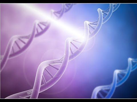 DNA double helix as a quantum mechanical process