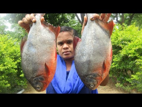Awesome Cooking Delicious Full Fish Curry Recipe( Without Cut )   VILLAGE FOOD