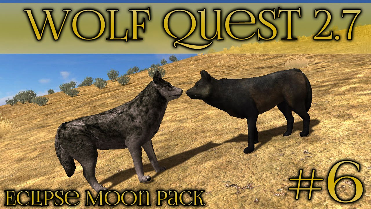 Wolf courtship among the grass plains wolf quest 27 episode wolf courtship among the grass plains wolf quest 27 episode 6 youtube ccuart Choice Image