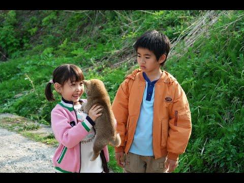映画『マリと子犬の物語』予告編 ▶1:36