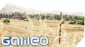Dürre in Kalifornien | Galileo | ProSieben
