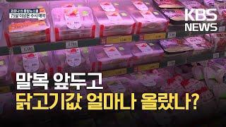 [생활경제] 말복 앞두고 닭고기 가격 급등 / KBS …