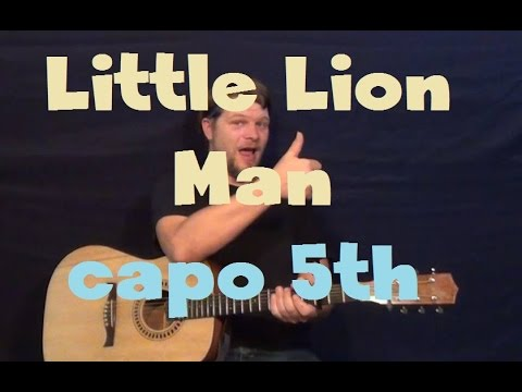 Little Lion Man Mumford Sons Easy Guitar Lesson How To Play