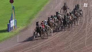Vidéo de la course PMU PRIX DE LA DEPECHE DU MIDI