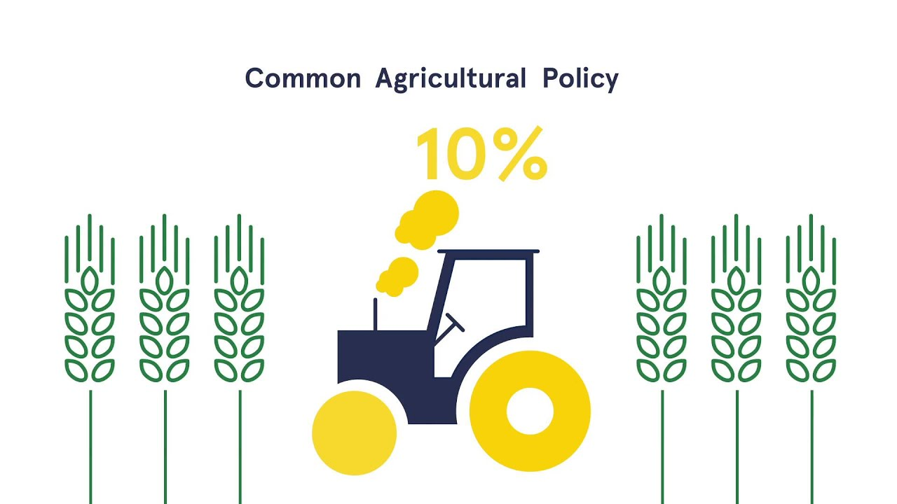 european agricultural policy Wheat grown in the united kingdom, which benefits from the common agricultural policy the roots of european agricultural protectionism stem from the formation of the european union itself.