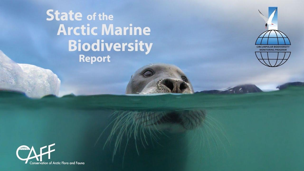 Changes In Arctic Marine Biodiversity Indicate Environment On Verge Of  Major Shift €� Geo Bon