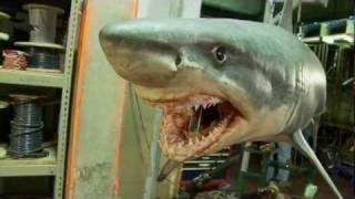 Shark Night 3D: Fake Sharks Real Scares Blu-Ray/DVD Bonus Feature