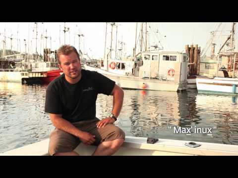 max'inux-:-killer-whale