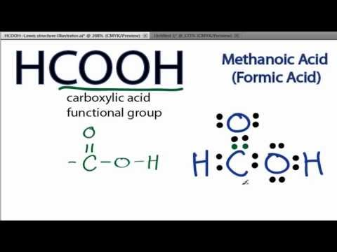 HCOOH Lewis Structure: How to Draw the Lewis Structure for HCOOH