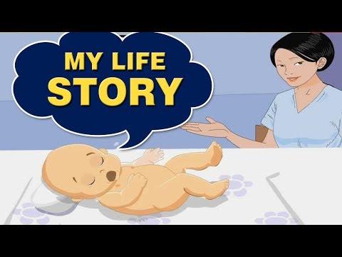 My Life Story - Home Revise 2nd Std. Maharashtra Board English Medium English