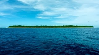 SWAINS ISLAND - One of the Last Jewels of the Planet - Trailer Video