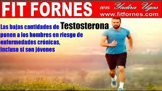 FIT FORNES  Las bajas cantidades de testosterona ponen a  hombres en riesgo de enfermedades crónicas