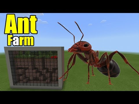 How to Make an Ant Farm | Minecraft PE