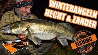 Winterangeln auf Hecht und Zander mit toten Köderfisch | Deadbait Monsterpike