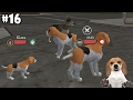 Dog Sim Online - Baby Dog - Android / iOS - Gameplay part 16