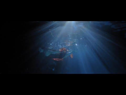 Youtube: Niro – J'dois l'oublier [Clip Officiel]