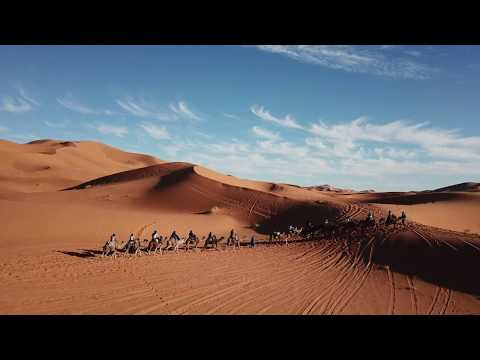 Camel Ride into the Sahara Desert