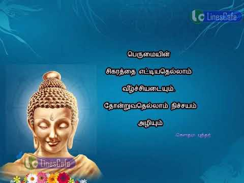 Gautama Buddha Quotes Tamil Whatsapp Status90 Youtube