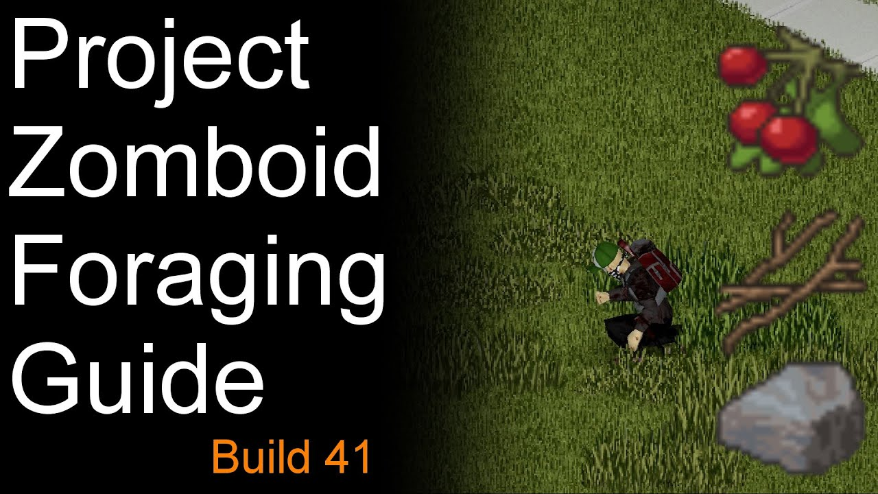 Project Zomboid Foraging Guide Build 20