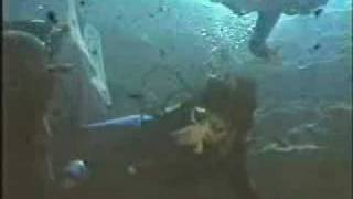 "Rescue 911 - Episode 202 - ""Scuba Cave"" (Part 1 of 2)"