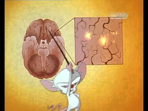 Закрытая черепно-мозговая травма - Болезни нейрохирургии