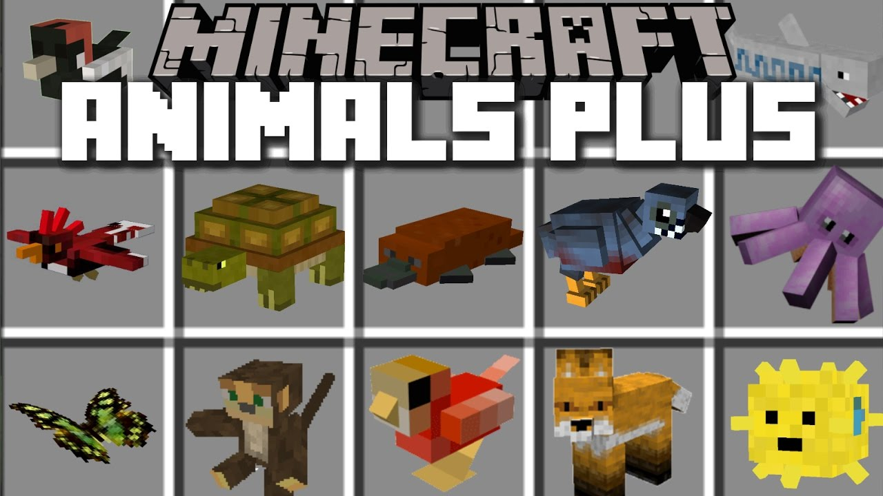 Image result for animal plus mod