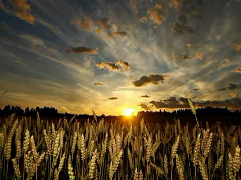 Dead Can Dance - the wind that shakes the barley