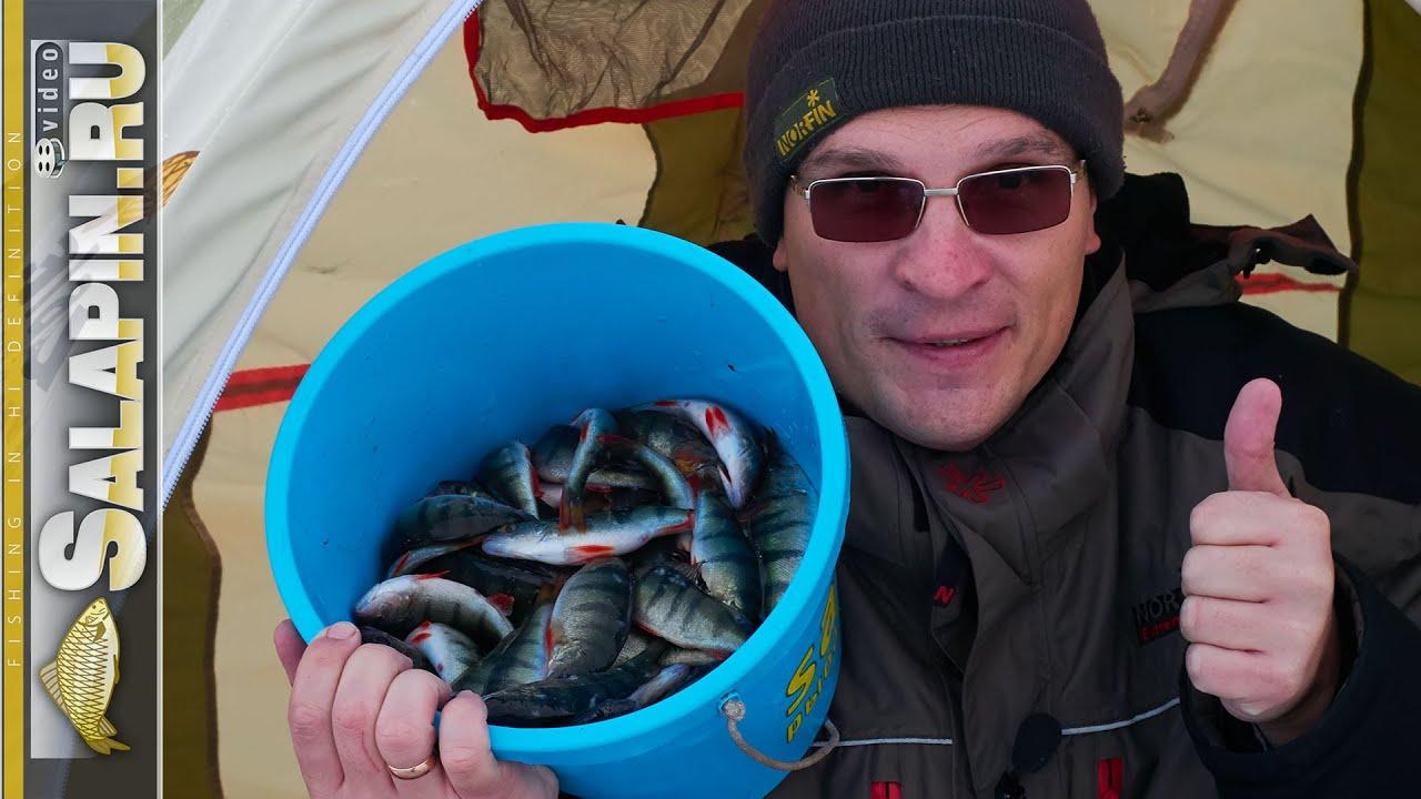 Зимняя рыбалка на Плещеевом озере