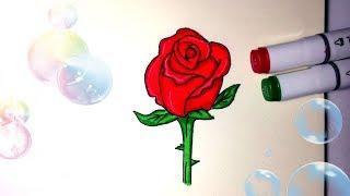КАК НАРИСОВАТЬ РОЗУ ♥ How to Draw a Rose Easy