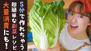 【白菜レシピに困ったら】超簡単な副菜レシピ3品!大量消費していきます!