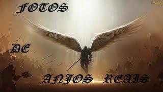 Fotos de Anjos