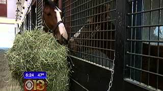 WJZ-TV Takes a Look at Sagamore Racing