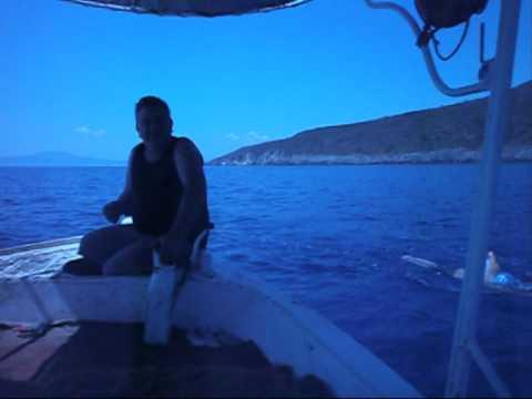 ARGYROPOYLOS DIMITRIOS  SWIM 31 KM. Α.Μ.Ε.Α.