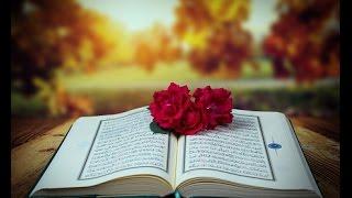 Kur'an-ı Kerim - 1. Sayfa - Sesli Türkçe mealli (Oku, dinle ve tefekkür et)