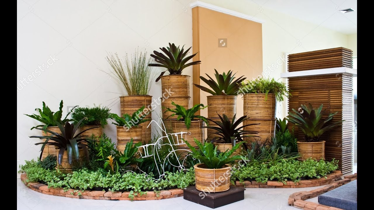Indoor Garden and Planters ideas Video | Pots Planters Design ... on pillow ideas, plaque ideas, outdoor ideas, very cool science project ideas, retaining wall ideas, vase ideas, gardening ideas, truck ideas, white ideas, garden ideas, plate ideas, animal ideas, teapot ideas, lantern ideas, leather ideas, coffee table ideas, plant ideas, stand ideas, pot ideas, bird feeder ideas,