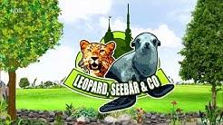 Folge 15 - Staffel 4 - Leopard, Seebär & Co. - Folge 135 Unterwegs mit Hagenbecks Tierarzt [ HD ]