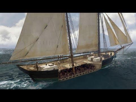Last Slave Ship Found on Alabama Coast Validates Descendants' Stories